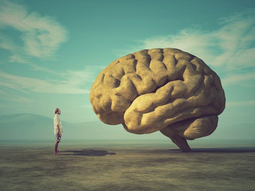 The benefits of studying JCU's Graduate Diploma of Psychology